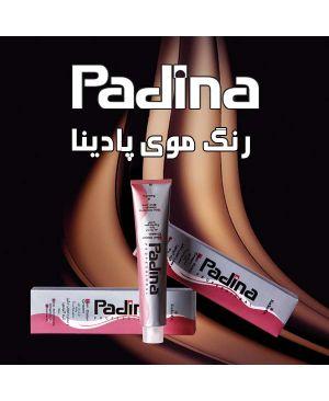 رنگ مو Padina
